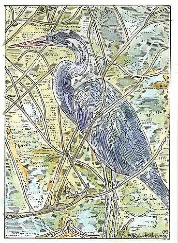 Art: Great Blue Heron by Artist Theodora Demetriades