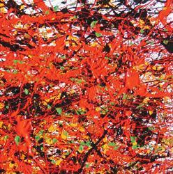 Art: Red I - no. 3 by Ben Walker