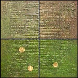 Detail Image for art Kaki Lattice