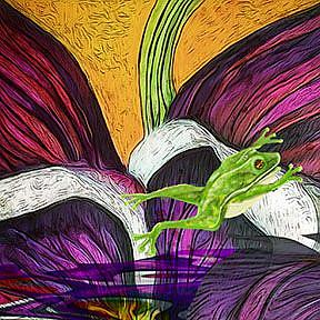 Detail Image for art Feather, Frog and Fauna
