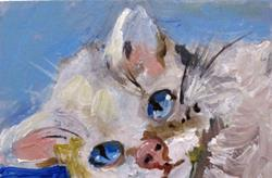Art: Cat with the Blue Eyes Aceo by Artist Delilah Smith