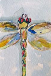 Art: Dragonfly aceo no.4 by Artist Delilah Smith