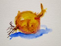 Art: Onion Aceo by Artist Delilah Smith