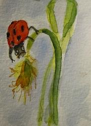 Art: Lady Bug and Grass Aceo by Artist Delilah Smith