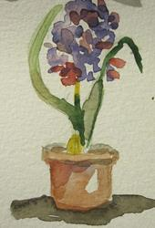 Art: Hyacinths Aceo by Artist Delilah Smith