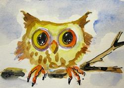 Art: Little Owl Aceo by Artist Delilah Smith