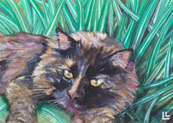 Art: Shadow in the Grass (alas!) by Artist Lindi Levison