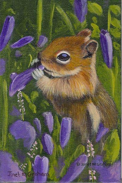 Art: Chipmunk amongst the flowers by Artist Janet M Graham