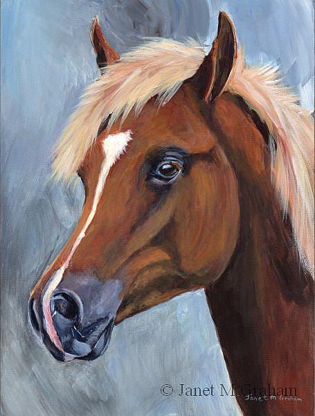 Art: Arabian Colt by Artist Janet M Graham