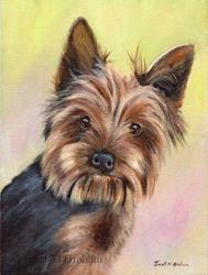 Art: Yorkshire Terrier by Artist Janet M Graham