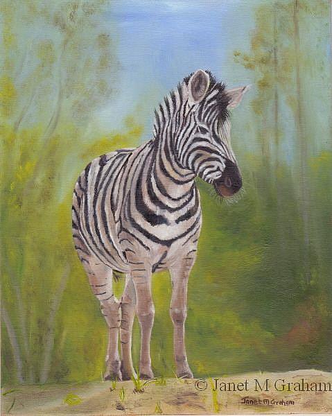 Art: Zebra by Artist Janet M Graham