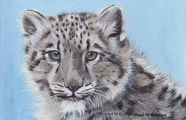 Art: Snow Leopard Cub by Artist Janet M Graham