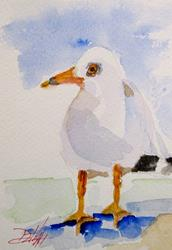 Art: Little Gull by Artist Delilah Smith