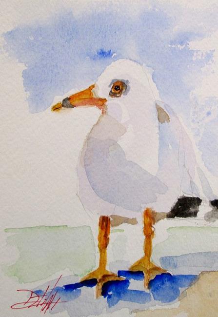 Art: Little Gull by Artist Delilah Smith