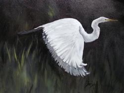 Art: Egret in Flight by Artist Barbara Haviland