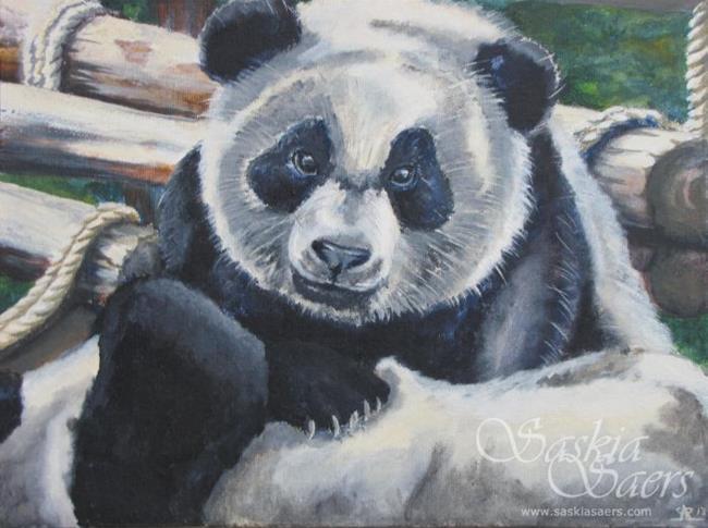 Art: Panda by Artist Saskia Franken-Saers