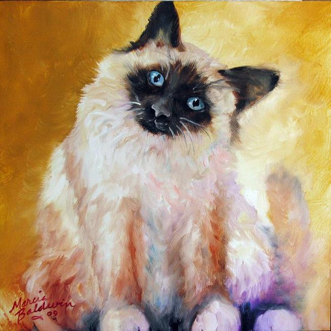 Art: SWEET KITTY SIAMESE by Artist Marcia Baldwin