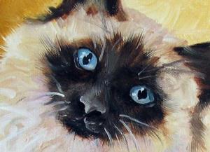 Detail Image for art SWEET KITTY SIAMESE