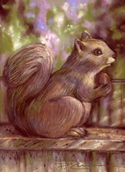 Art: Squirrel on My Fence by Artist Patricia  Lee Christensen