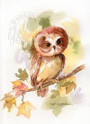 Art: Young Autumn Owl - (Sold) by Artist Patricia  Lee Christensen