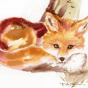 Detail Image for art Red Fox in Repose