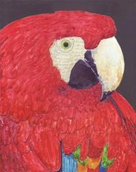 Art: Parrot Portrait by Artist Ulrike 'Ricky' Martin