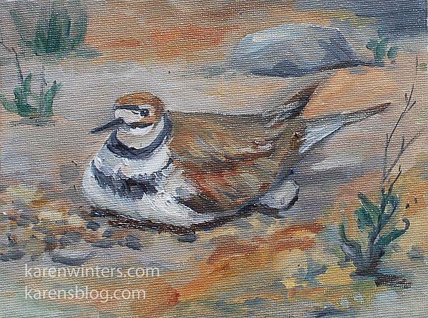 Art: Kildeer bird oil painting plein air by Artist Karen Winters