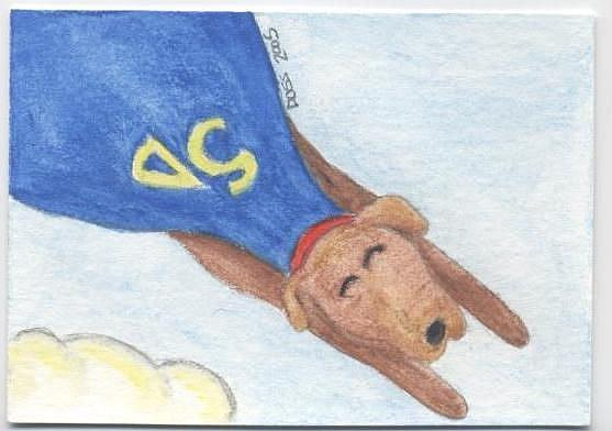 Art: Super Dog ACEO by Artist Jenny Doss