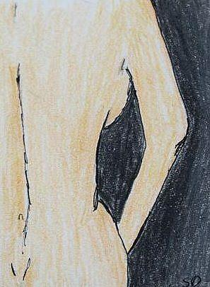 Art: Purity by Artist Shari Lynn Schmidt