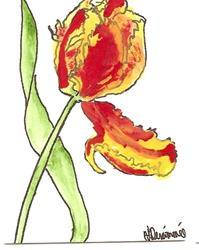 Art: Parrot Tulip by Artist Nancy Denommee