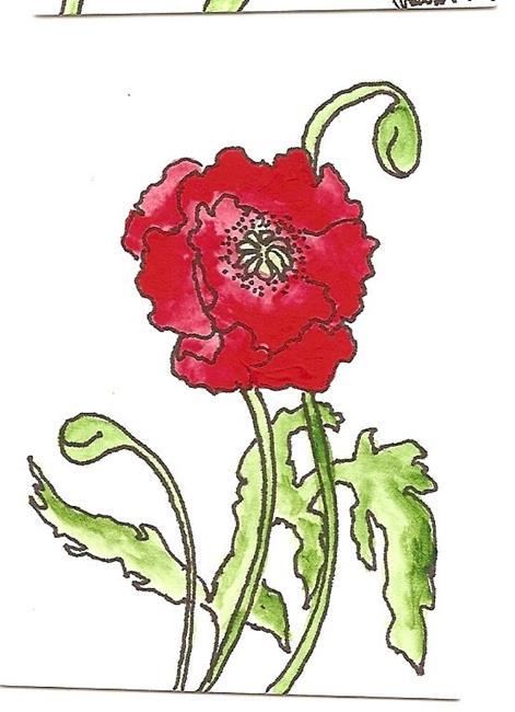 Art: Oriental Poppy original painting by Artist Nancy Denommee