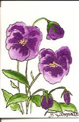 Art: Purple Pansies original ACEO by Artist Nancy Denommee