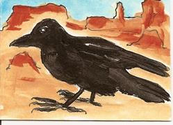 Art: Crow in the Southwest original ACEO painting by Artist Nancy Denommee