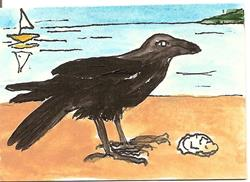 Art: Crow at the Beach original ACEO painting by Artist Nancy Denommee
