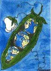 Art: WORLD PEAS original ACEO by Nancy Denommee