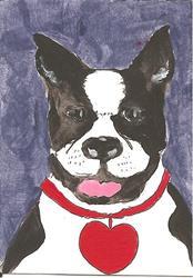 Art: Boston Terrier Wears My Heart by Artist Nancy Denommee