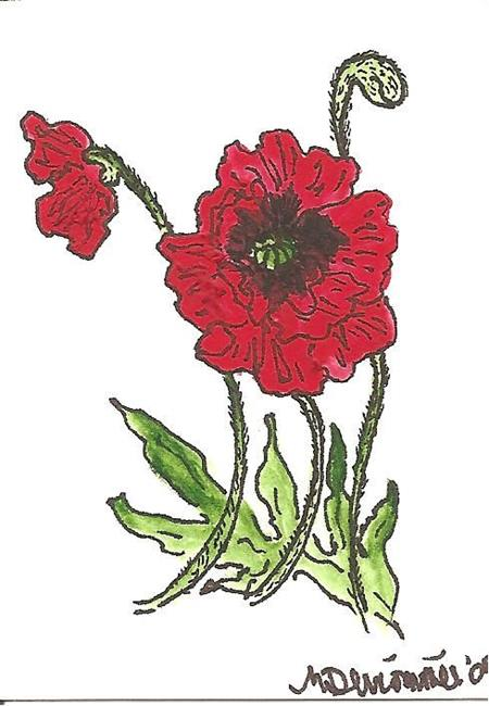 Art: Poppy original ACEO by Artist Nancy Denommee