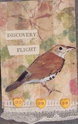 Art: Discovery Flight mixed media ACEO by Artist Nancy Denommee