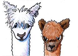 Art: Llively Llama Llingo by Artist KiniArt