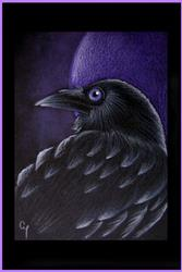 Art: RAVEN PROFILE 28 by Artist Cyra R. Cancel