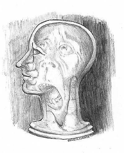 Art: Silent Scream (Pen Sketch 1) by Artist Madeline  Carol Matz