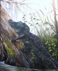 Art: Tree Hugger Gator  Alligator by Artist Barbara Haviland