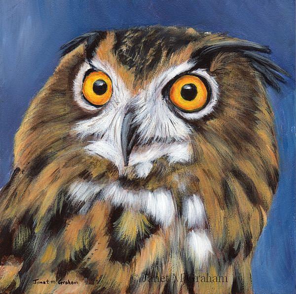 Art: Owl by Artist Janet M Graham