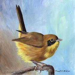 Art: Common Yellowthroat by Artist Janet M Graham