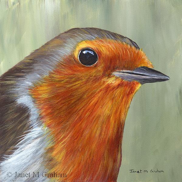 Art: Robin No 8 by Artist Janet M Graham