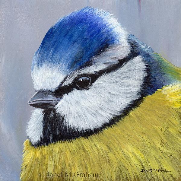 Art: Blue Tit No 2 by Artist Janet M Graham