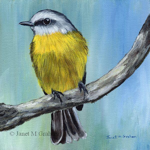 Art: Eastern Yellow Robin by Artist Janet M Graham