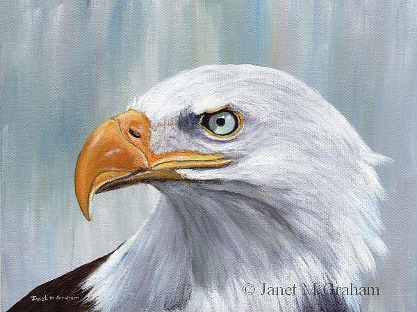 Art: Bald Eagle 2 by Artist Janet M Graham