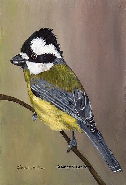 Art: Crested Shrike Tit by Artist Janet M Graham