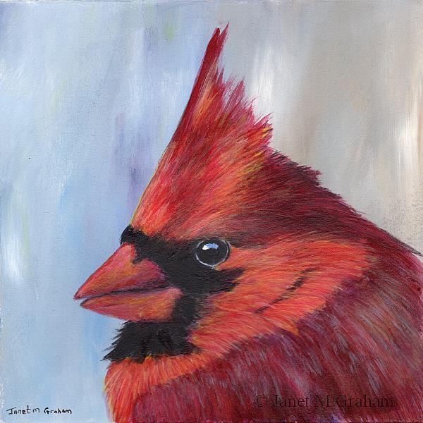 Art: Northern Cardinal (Male) by Artist Janet M Graham
